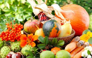 Food Fresh to Reduce Waste and Save Money